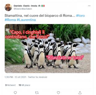 tweet sul toro a roma