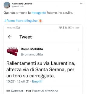 tweet sul toro a roma 4