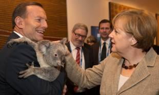 tony abbott merkel koala