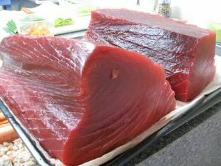 la carne del tonno pinna blu