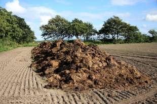 fertilizzanti agricoltura biologica