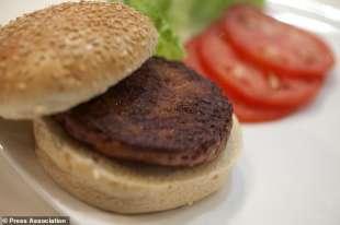 hamburger fatto in laboratorio