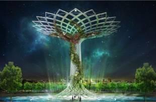 albero expo