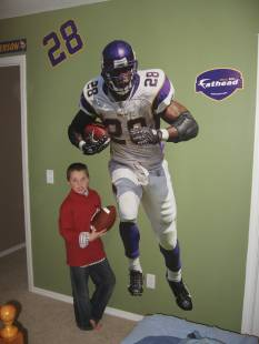 Drake's 11th Birthday fathead