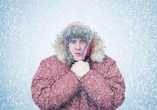 freddo 2