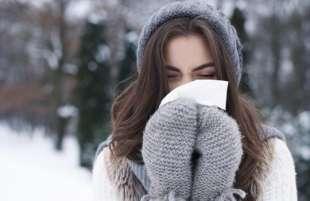 freddo 3