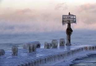 freddo 5