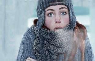 freddo 7